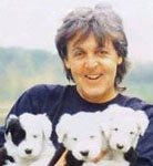 [Picture of Paul McCartney]